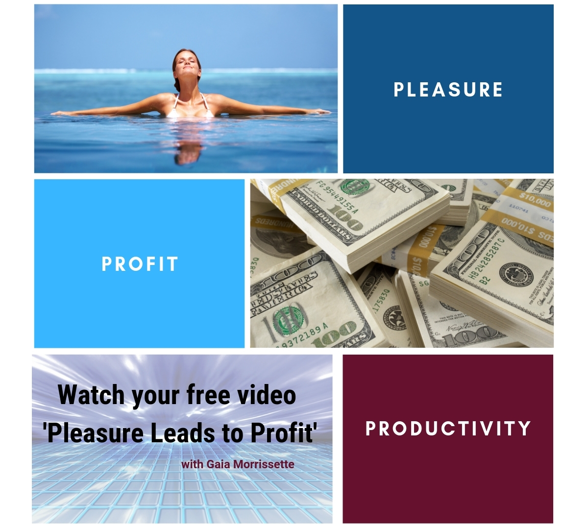 Pleasure Leads to Profit- Gaia Morrissette